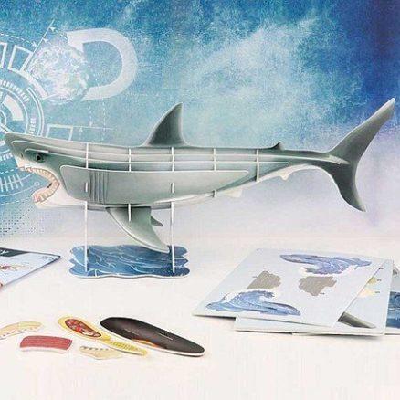 3D modelbouwdoos Haai